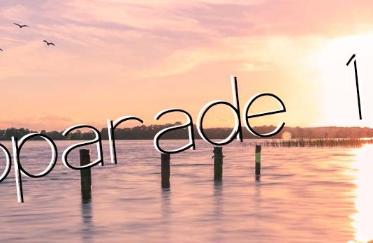fotoparade-2017-entspannt-logo-2